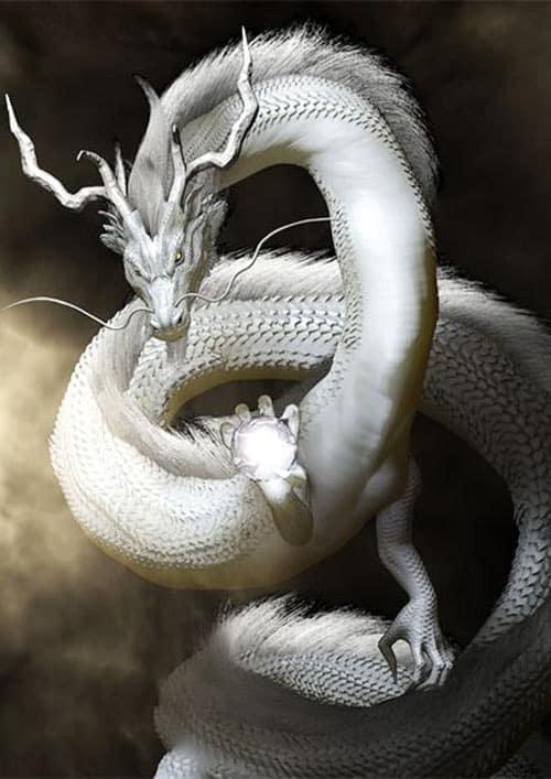 Dragon chinois et Feng Shui